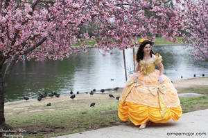 Beauty and the Beast Belle's Ballgown by aimeekitty