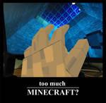 Too much Minecraft?