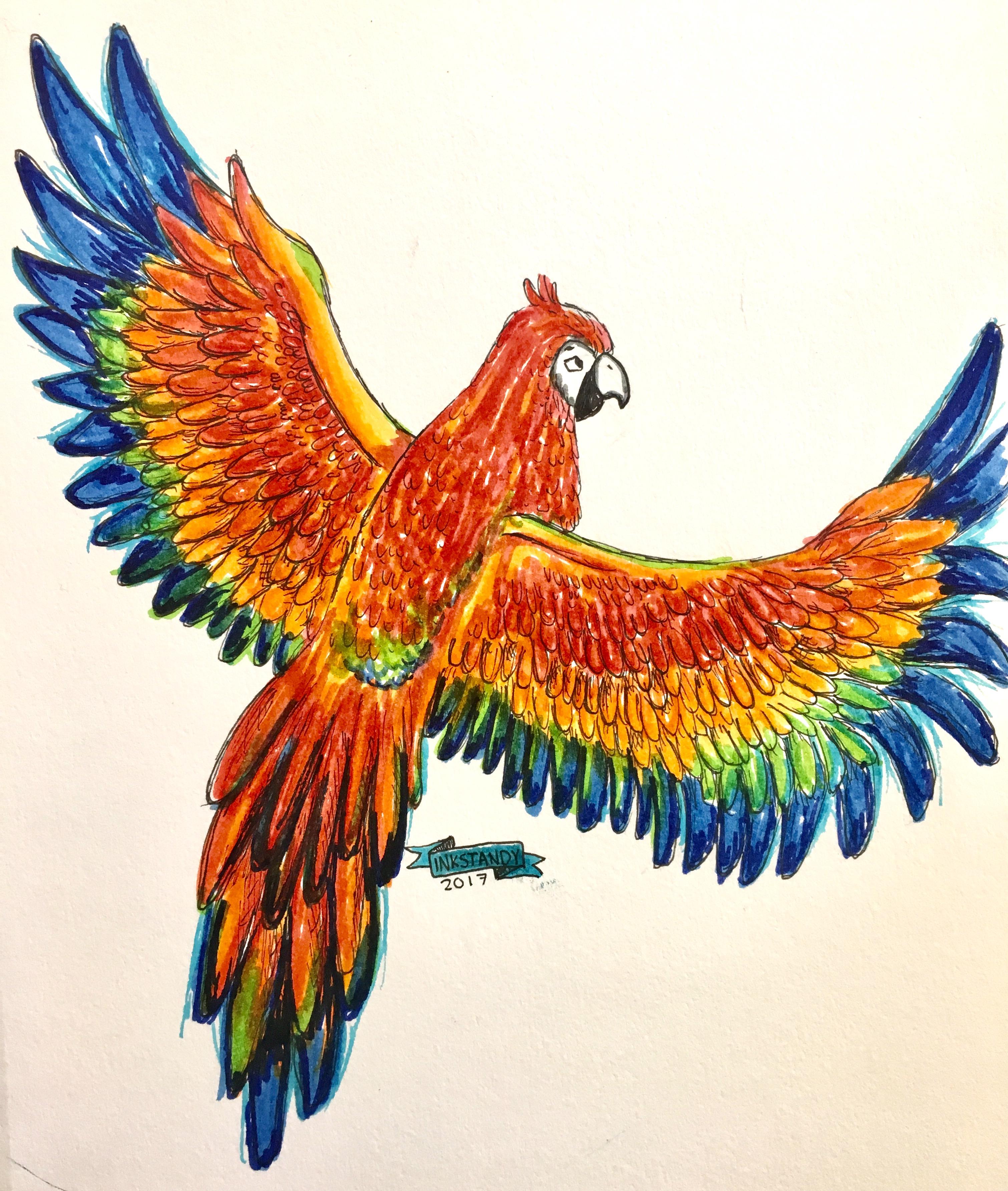 Macaw by Inkstandy