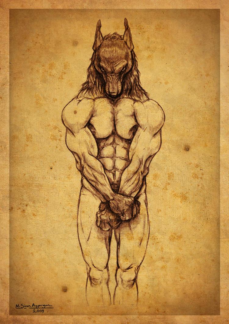 Anubis by MehmetSinanAyyorgun