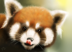 Tiny Red Panda by Scarfowl