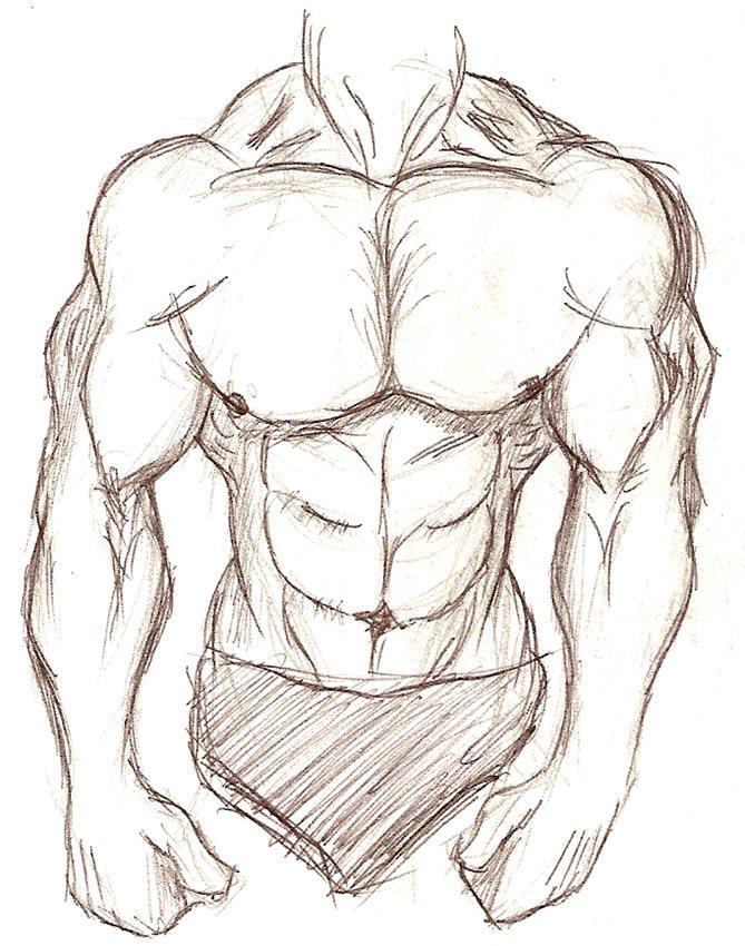 Muscular Body Sketch By Sixarmedwerewolf On Deviantart
