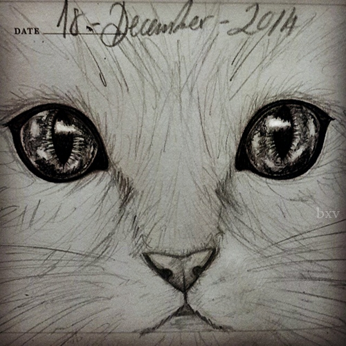 Meow by Greendogbex