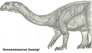The Dinosaur of Yunnan