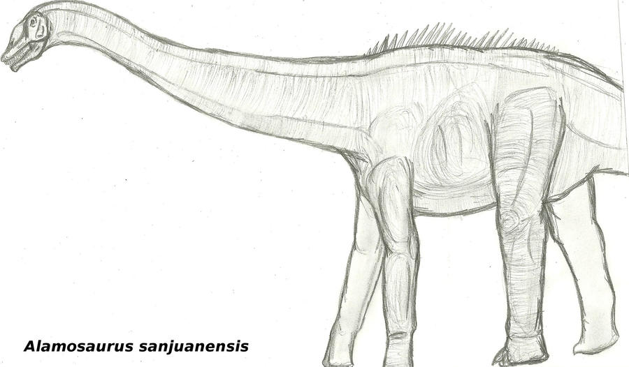 Tyrannosaurus Deinonychus Drawing Dinosaur Alamosaurus, simple ... | 526x900