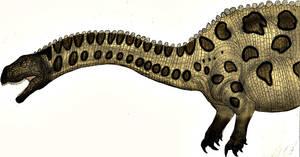 Massospondylus Collab