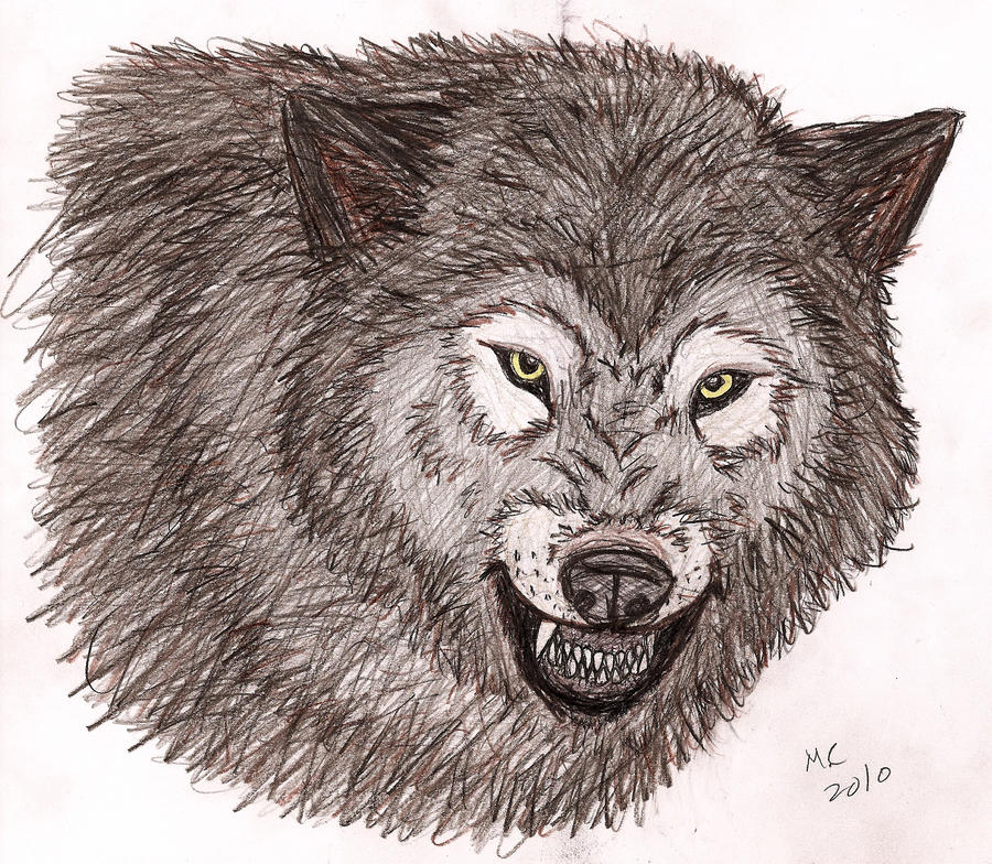 mad wolf drawings - photo #10
