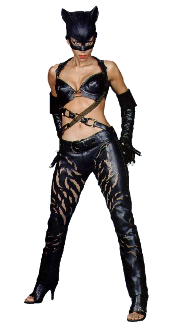 Catwoman Halle Berry Png By Gasa979 On Deviantart