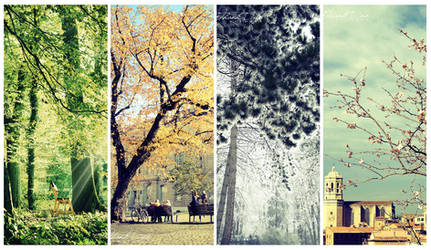 4 seasons of my memory by thanhdad