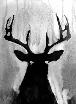 Whitetail - Buck