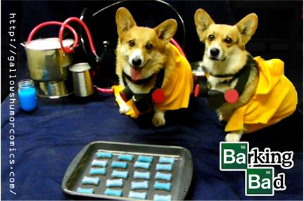 Barking Bad Corgis by GallowsHumorComics
