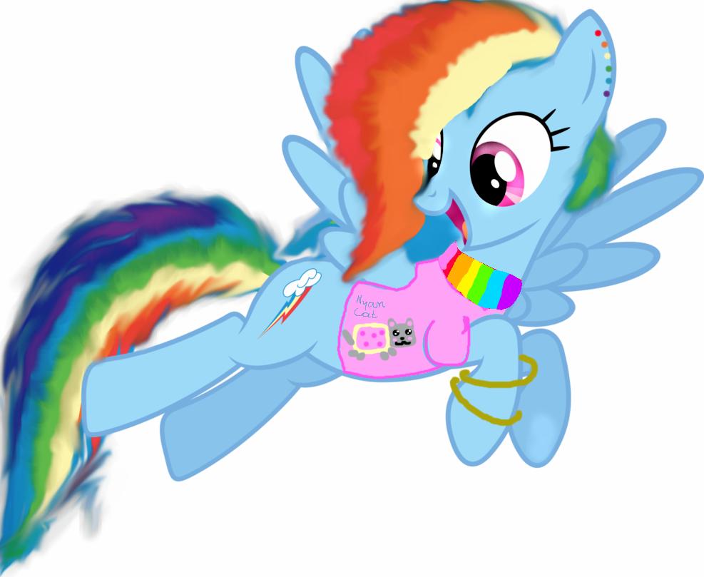 Nyan Cat And Rainbow Dash Rainbow Dash Fanka Nyan Cat by