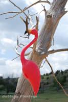 Tree Climbing by Jeffery-the-Flamingo