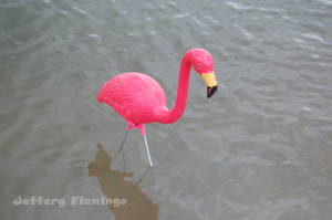 Lake Water by Jeffery-the-Flamingo