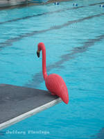 Watch This by Jeffery-the-Flamingo