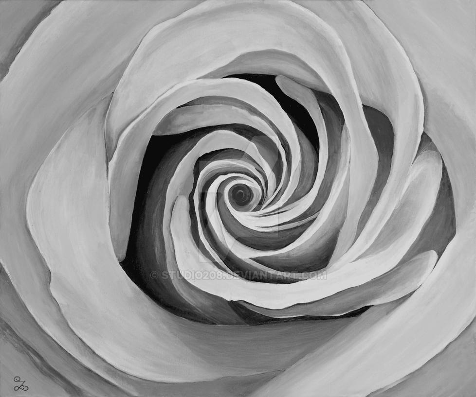 Blanco Y Negro Rosa By Studio208 On Deviantart
