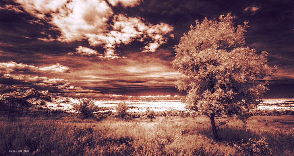 Daylight by JoelFaber