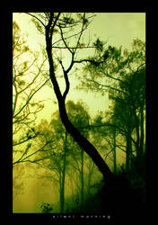 silent morning by sigpras