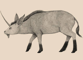 Beastiary- The Pygmy Unicorn by SarahFraggle