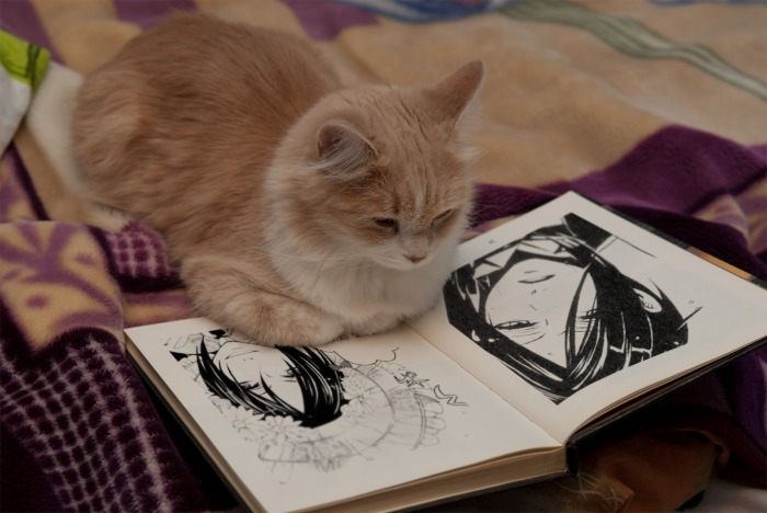 Cat reading kuroshitsuji? by AsiaMichealis