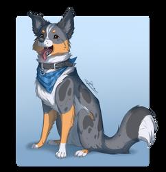 New dog OC by IreMau