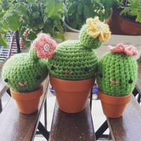 Cacti! by psycho-kitty