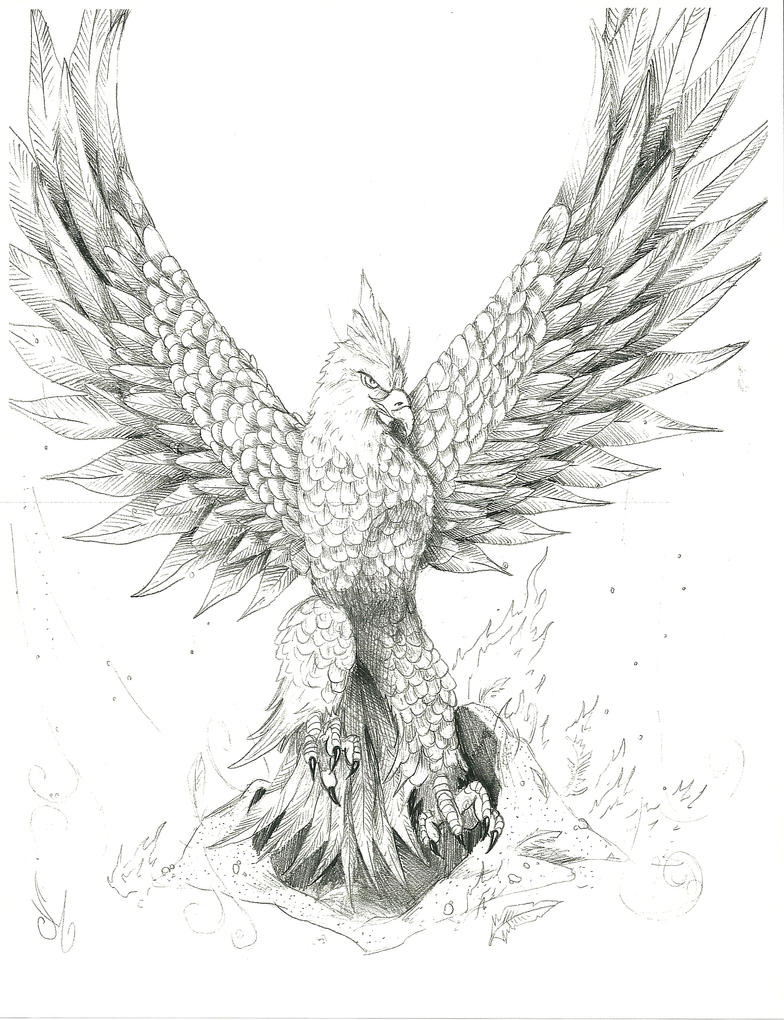 how to draw a realistic phoenix