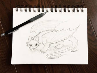 Toothless the Dragon by Serina67