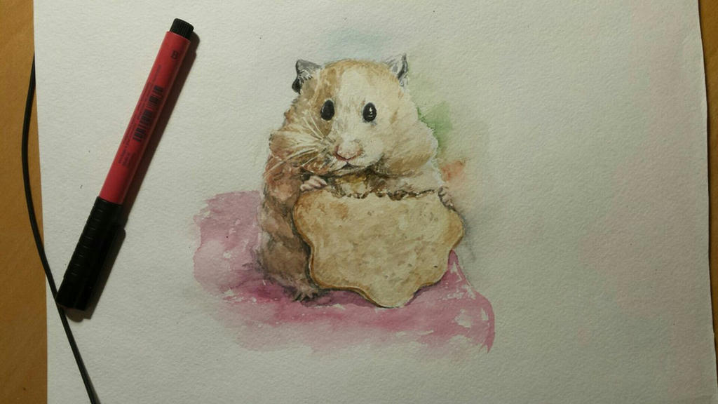 Hamster by TiredMonkey