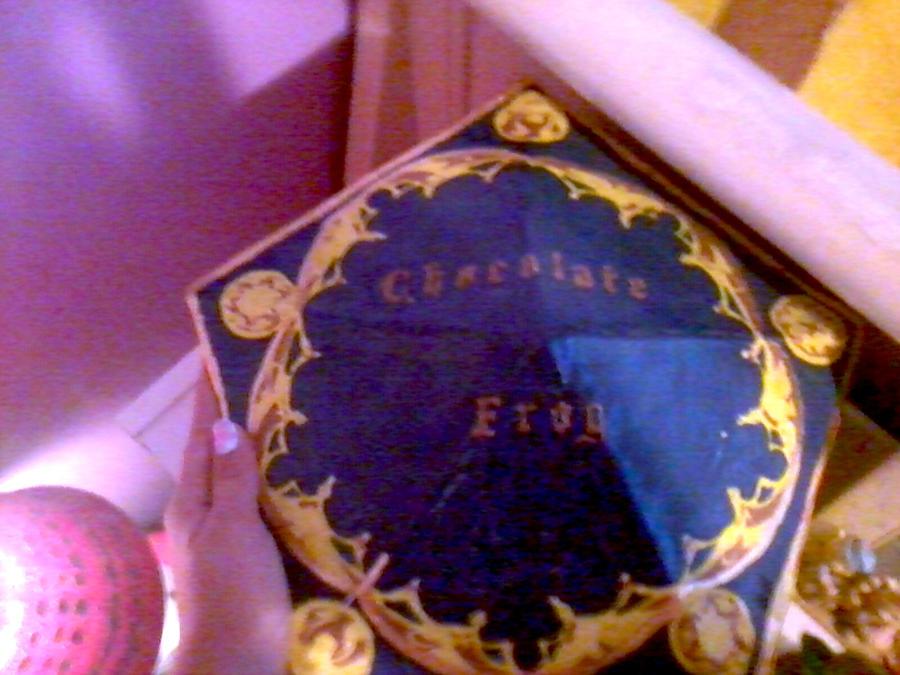 Giant Chocolate Frog Box by CloudNinja5 on DeviantArt