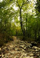 Hiking by PinkVillain