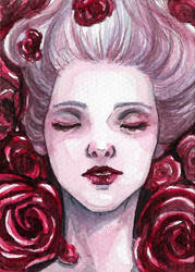 ACEO roses