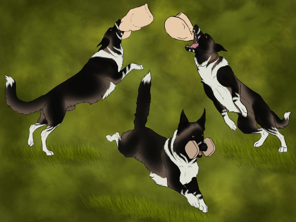 Zeus schutzhund by Caterang8