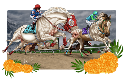 Foxfire's Triple Crown - the Preakness Stakes