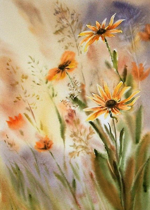 Warm meadow