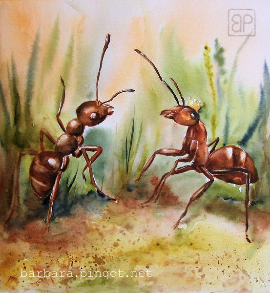 Big ants by stokrotas