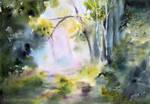 Lesny Blask/Forest glow