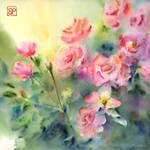 Roze-z-pocztowej/Roses from Pocztowa street