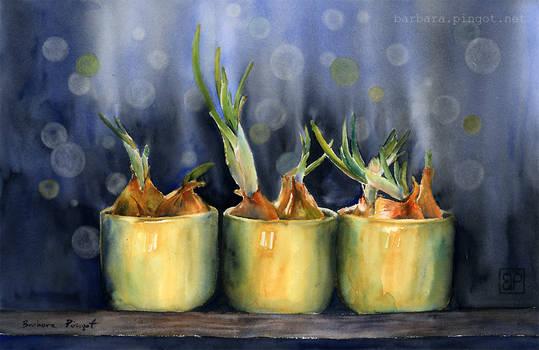 Taki szczypiorek/Just spring onion