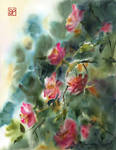 Radosne roze/Joyful roses