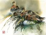Kacze opowiesci/ Duck Tales
