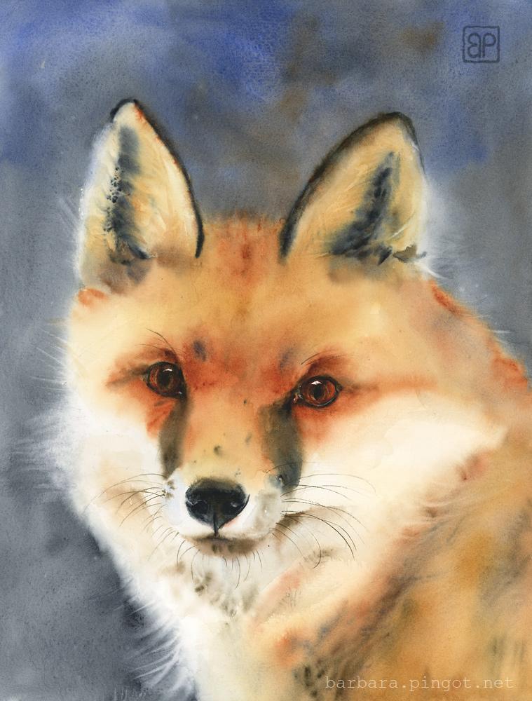 Lis Leon / Leon the fox by stokrotas
