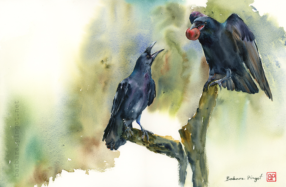 Kumple Kruki/ Raven buddies by stokrotas