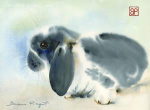 Tuptus