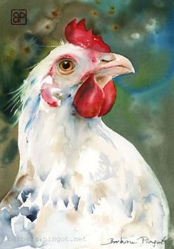Duma i Upierzenie/ Pride and plumage