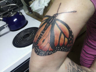 Monarch Butterfly by AngelinaSattler