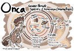 Chimereon MYO l RefSheet Onca (Approved!)