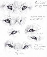 Wolf eyes by AdothWolf