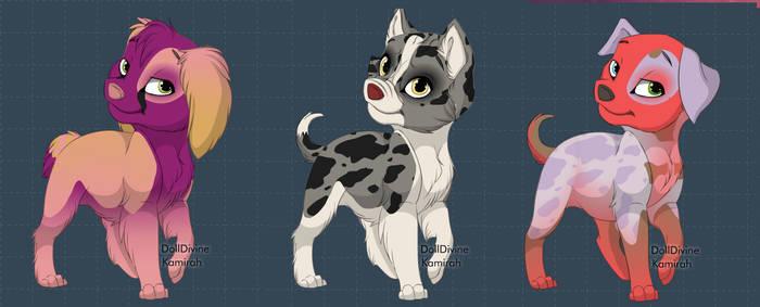 puppy adopt