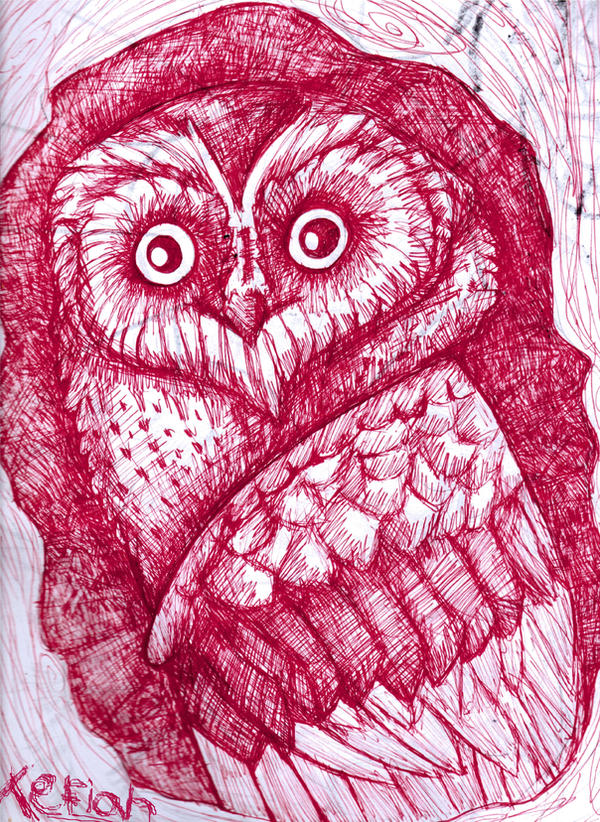 Red owl by Tefian